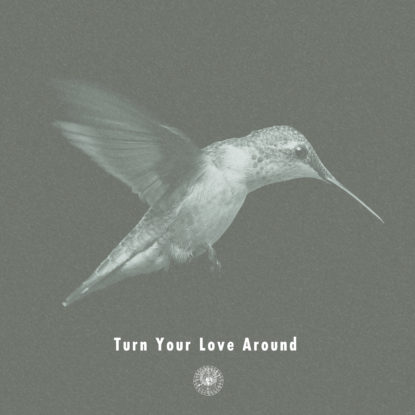 TurnYourLoveAround_cover