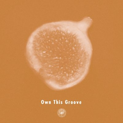 OwnThisGroove